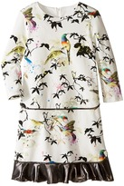 Roberto Cavalli Bird Print Dress w/ Contrast Ruffle Hem Girl's Dress