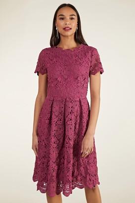 Yumi Purple Lace Skater Dress
