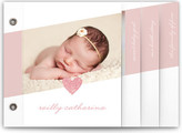 Minted Sparkle Baby Birth Announcement Minibooks