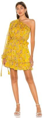 Alexis Edyta Dress