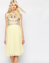Needle & Thread Foliage Cluster Tulle Dress