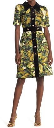 Dolce & Gabbana Pear Print Puff Sleeve Dress
