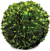 Napa Home And Garden Preserved Boxwood 8In Sphere