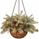 NATIONAL TREE CO National Tree Co. Frosted Artic Spruce Feel Real Hanging Basket