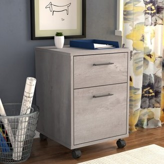 Beachcrest Home Cyra 2-Drawer Vertical Filing Cabinet Color: Washed Gray