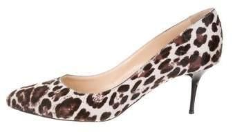 fdfc87ca6c Jimmy Choo Leopard Shoes - ShopStyle