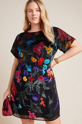 Maeve Alisa Burnout Velvet Tee Dress