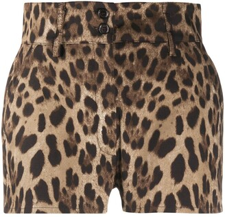 Dolce & Gabbana Leopard Print High-Waisted Shorts