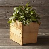 Williams-Sonoma Williams Sonoma Vertical GRO Planter Box