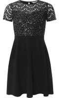 Dorothy Perkins Womens Petite Black Sequin Lace Fit and Flare Dress- Silver