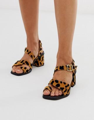 Asos DESIGN Hickery premium suede toe loop block heeled sandals in leopard