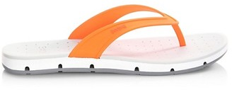 Swims Ghree Points Thong Sandals
