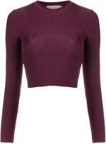 Cecilia Prado knit crop top - women - Spandex/Elastane/Viscose - M