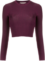 Cecilia Prado knit crop top - women - Viscose/Spandex/Elastane - P
