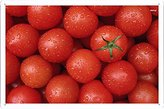 Food & Beverage Decor Sign Fresh Tomatoes With Water Drops Metal Plate Tin Sign Poster Wall Decor (20*30cm) By Jake Box