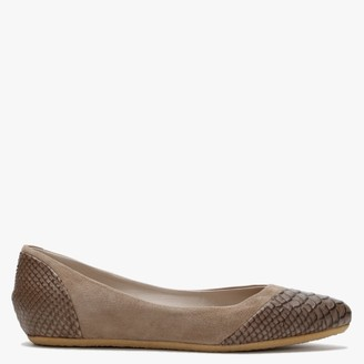 Yin Saba Taupe Reptile Leather Pointed Flats