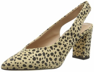 Dorothy Perkins Women's Cheetah Everley Court Closed Toe Heels