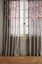 Anthropologie Taye Curtain