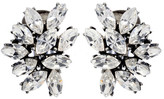 Ben-Amun Crystal Cluster Rounded Earrings