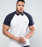 French Connection PLUS Raglan Polo Shirt with Contrast Collar