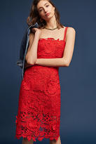 Nanette Lepore Alyra Lace Dress