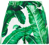 Dolce & Gabbana Printed Cotton And Silk-blend Brocade Shorts - Green
