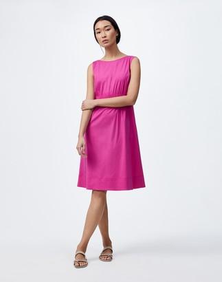 Lafayette 148 New York Petite Classic Stretch Cotton Tryston Dress