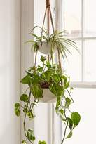 Urban Outfitters Ellis Double Hanging Planter