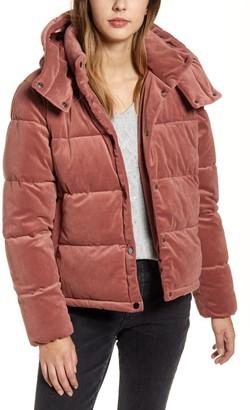 Rachel Parcell Velvet Puffer Coat
