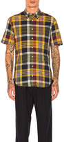 Gitman Brothers Button Down in Yellow. - size S (also in )