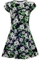 Select Fashion Fashion Womens Green Neon Floral Aline Skater Dress - size 6