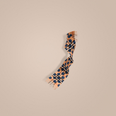 Burberry The Mini Classic Cashmere Scarf in Check and Dots