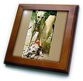 3dRose LLC ft_518_1 Dogs Whippet - Whippet - Framed Tiles