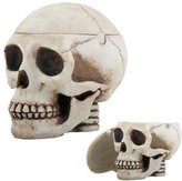 Summit Skull Head Box Ashtray Display Decoration