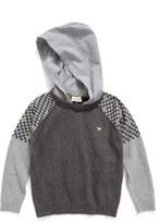 Armani Junior Contrast Sleeve Sweater with Removable Hood (Little Boys & Big Boys)