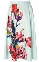 Dorothy Perkins Womens Mint Floral Midi Skirt- Green