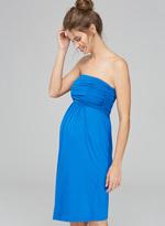 Isabella Oliver Delphine Maternity Dress