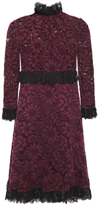 Dolce & Gabbana Ruffle-trimmed Cotton-blend Corded Lace Mini Dress
