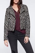 Sanctuary Leopard Moto Jacket