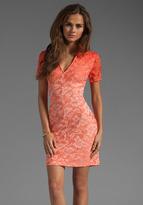 Dolce Vita Alexis Stretch Lace Dress