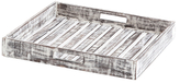 Axiculus Tray