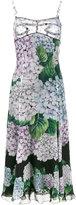 Dolce & Gabbana hydrangea print midi dress