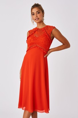 Little Mistress Alana Paprika Lace Midi Shift Dress