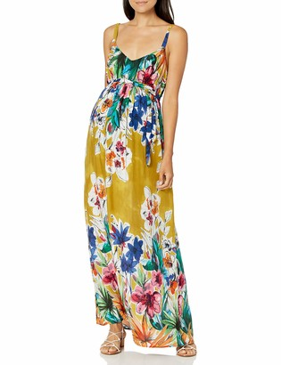 Jules & Jim Women's Maternity Maxi Dress with Buttons