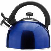 Asstd National Brand Sabal Stainless Steel 21 Qt Tea Kettle