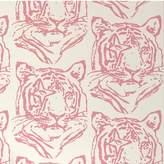 Aimee Wilder Star Tiger Wallpaper