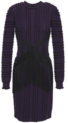 Roberto Cavalli Fringed Macrame-paneled Boucle-trimmed Pointelle-knit Mini Dress