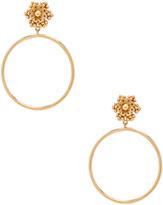 Dolce & Gabbana Hoop Earrings