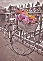 Graham & Brown Bicycle wall art