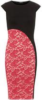 Dorothy Perkins Black lace contrast dress